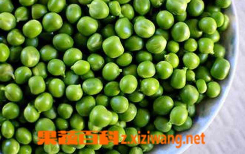 果蔬百科青豆怎么做好吃